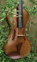 five string violin in a tree